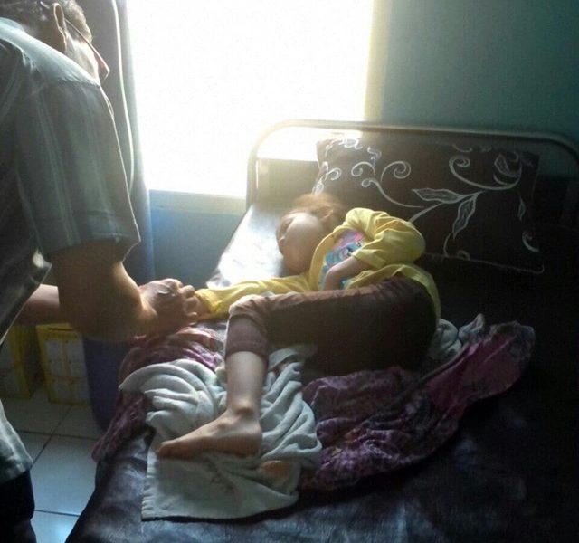 Bpjs Batal Naik: Korban Ubur-ubur Di Pantai Selatan Mulai Berjatuhan, 2