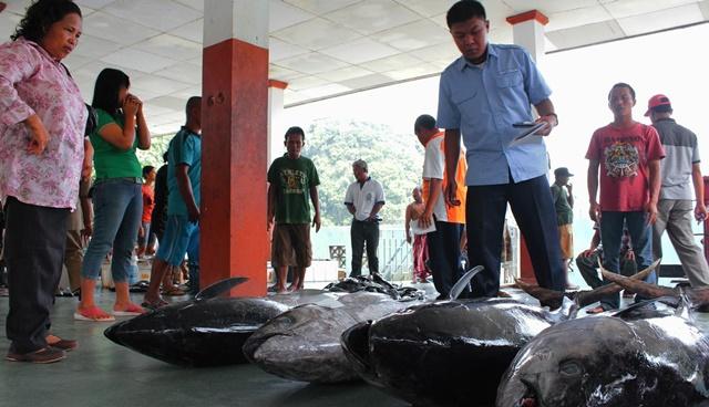 Hingga Triwulan ke-3, Laut Gunungkidul Hasilkan Lebih dari 2.000 Ton Ikan 157