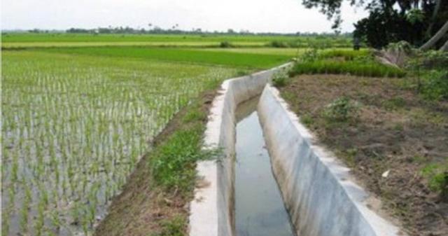 Maksimalkan Potensi Pertanian, Pemerintah Akan Bangun Saluran Irigasi di 11 Titik 145