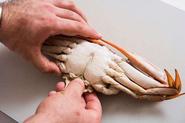Tujuh Tips Membersihkan Kepiting 167