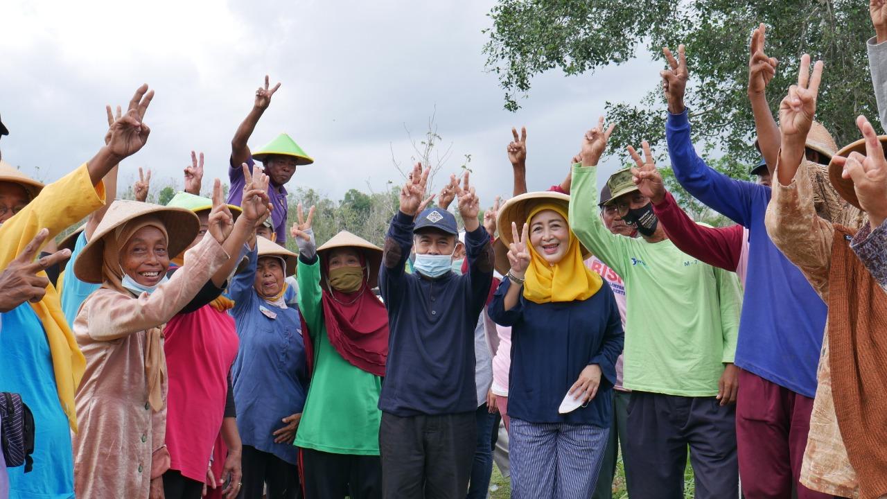 Melejit saat Pandemi, Sektor Pertanian Gunungkidul Menuju Terbaik se DIY 157
