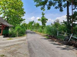 Kondisi jalan Kedungdowo Wetan