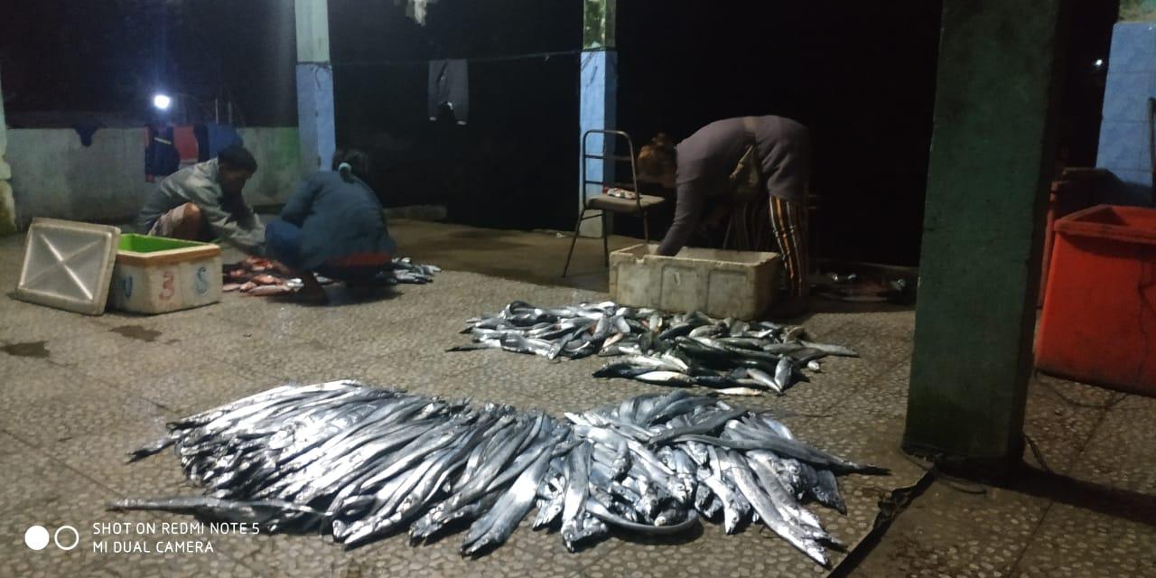 Ketua Himpunan Nelayan Sebut Tak Tercapainya Target Tangkapan Ikan Karena Cuaca 157