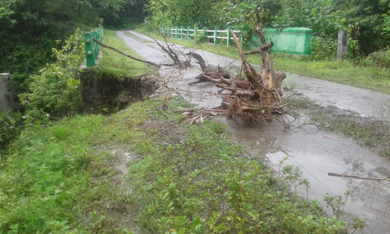Intensitas Hujan Tinggi, Sejumlah Bencana Alam Terjadi di Gunungkidul 161