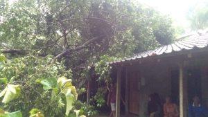 Intensitas Hujan Tinggi, Sejumlah Bencana Alam Terjadi di Gunungkidul 182
