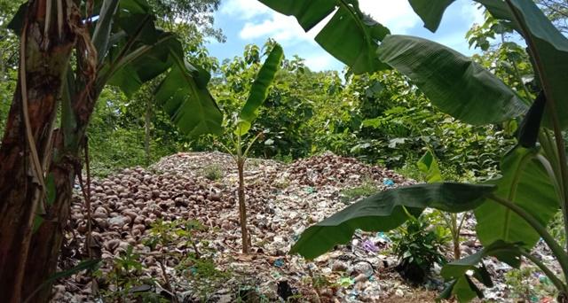 Sewa Lahan TPS Habis, Pokdarwis Pantai Indrayanti Kebingungan Buang Sampah 157