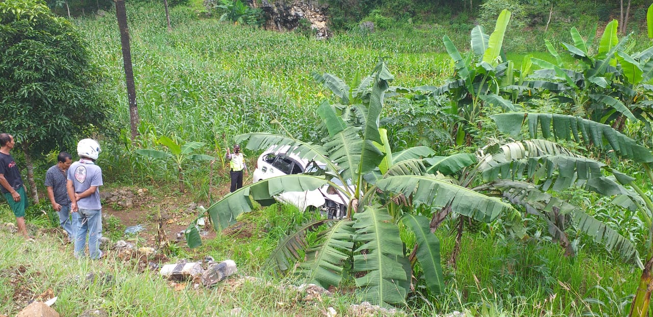 Sopir Ngantuk, Mobil Berisi Rombongan Wisatawan Terjun ke Ladang Sedalam 5 Meter 161