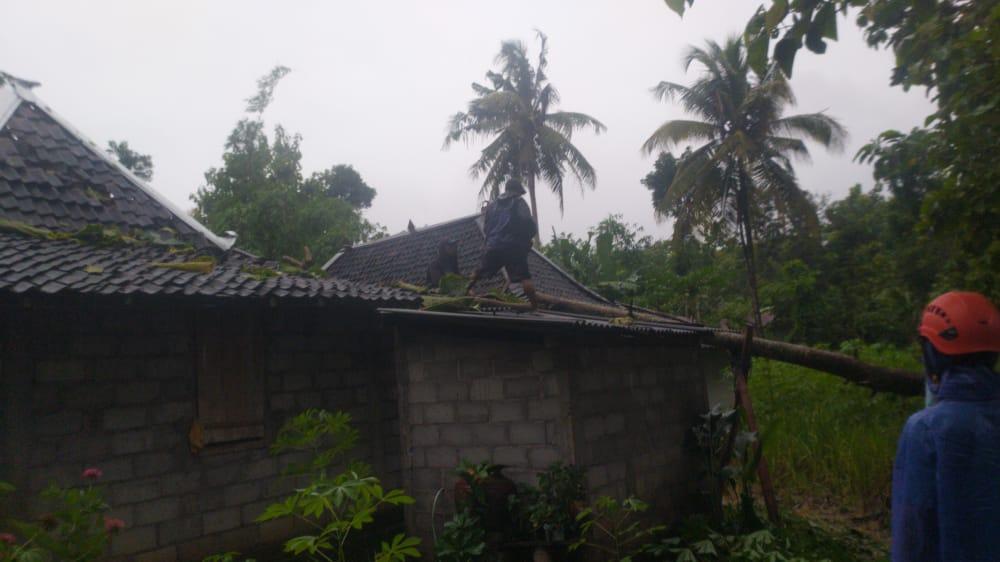 Hujan Disertai Angin Kencang Landa Paliyan, Satu Rumah Warga Rusak Parah Tertimpa Pohon 157
