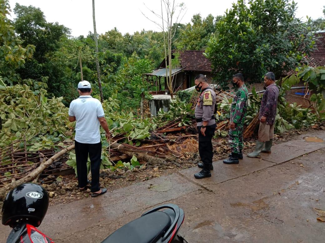 Tertimpa Pohon Tumbang, Rumah Wardani Rata dengan Tanah 157