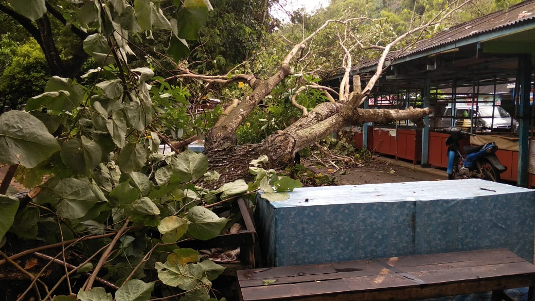 Dalam Sehari, BPBD Catat Kerugian Akibat Bencana Capai Ratusan Juta Rupiah 157
